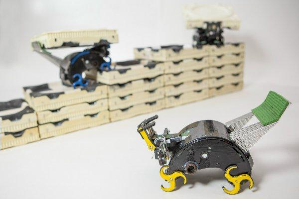 Роботы-термиты укладывают блоки