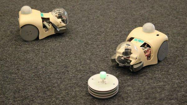 Роботы-мыши